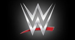 WWE Logo - Wrestling Examiner