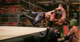 mil-muertes-kills-marty-the-moth-wrestling-examiner