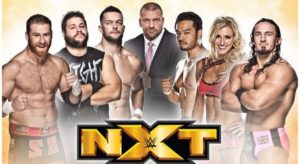 Triple H with NXT - Wrestling Examiner