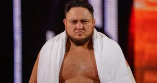 Samoa Joe WWE - Wrestling Examiner