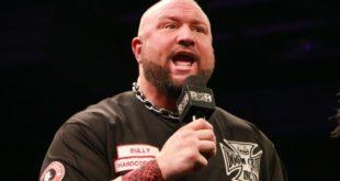 Bully Ray - Wrestling Examiner