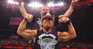 Triple H & Shawn Michaels - Wrestling Examiner
